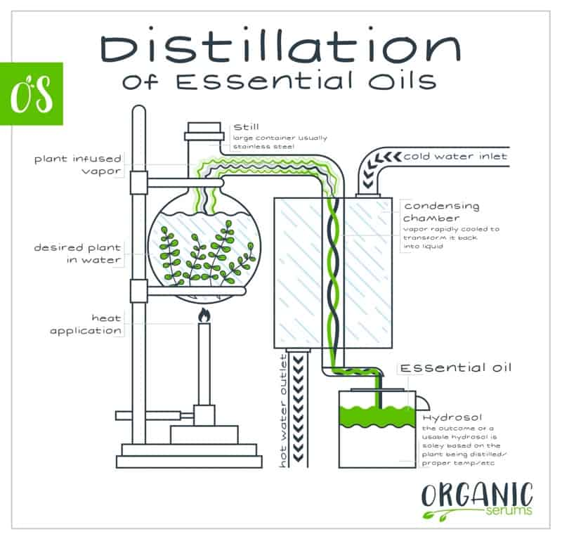 Distillation of Essential Oils
