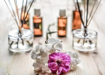 Most Popular Essential Oils to Start With